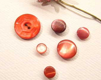 """6 Vintage Buttons, Dyed RED Shell, 1/4"""" to 11/16"""", ANIMAL Charity Donation"""