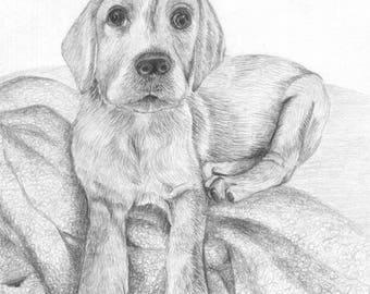Custom A4 Pet Portrait - Original Illustration