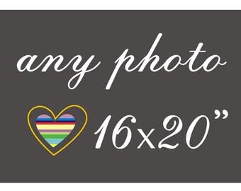 Photo Upsize, Any Photo, 16x20, animal photo, botanical photo, vintage photo print, Macro Photos, Australian Photos Fine Art Print