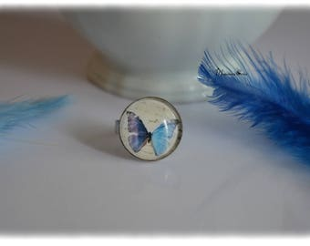 Blue butterfly Ring