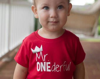 Mr ONEderful - Crown - 1st Birthday shirt - Front and Back design - Name on back - first birthday - one year - Mr Wonderful - prince