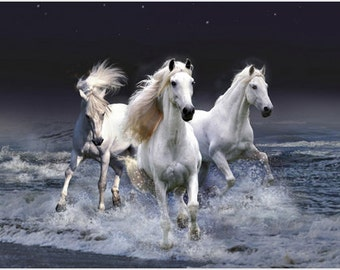 Beautiful Horses Running In Surf Poster White Stallions Ocean Spray 24x36