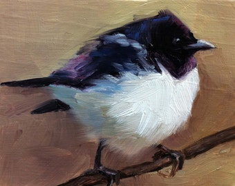 Violet-backed Starling - Bird Painting - Open Edition Print