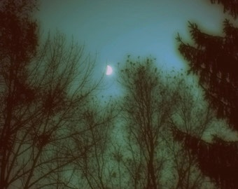"Dreamy Nature Photography ""Mysterious Moon"" Ethereal Night Sky Stars Photograph Print, Green Teal Blue Sky, Fairy Tale Forest"