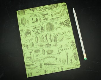 Animals: Insects Softcover Notebook | Entomology Journal Gardener Gift, Biology, Lined Recycled Paper, Bugs, Science Gift, Green