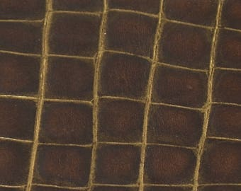 Coupon way brown leather Croc (8790681)