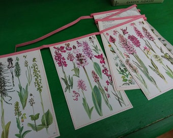 Pretty illustrated floral paper bunting, in pink