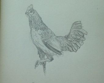 Custom Animal Art