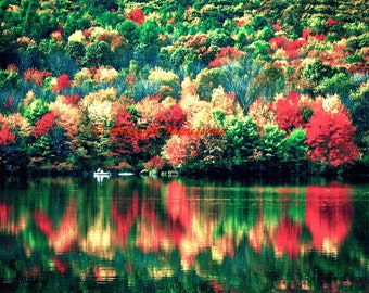 trees in fall, maple trees in fall, nature photography, trees and lake, fishing photo, autumn woods, nature art photo, nature wall decor