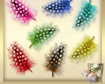 8 Feathers Overlays Vol. 4 - Colorful feathers - digital clip art  - Foto Overlays Photography-Overlays - Instant Download - PNG Files