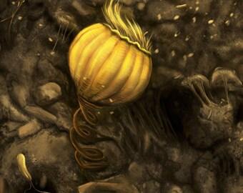 Vorticella in Soil