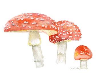 Three Toadstools Watercolor Painting - 10 x 8 / 11 x 8.5 - Fine Art Print Giclee Print - LANDSCAPE Orientation