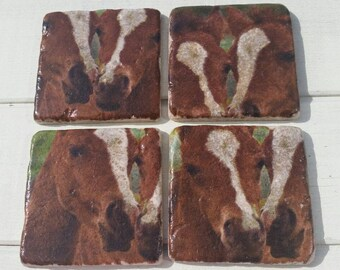 Twin Foals Set of 4 Tea Coffee Beer Coasters