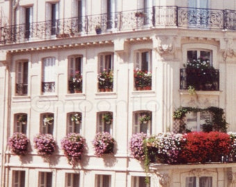 Paris-Fenster in den Sommer Nr. 2 8 x 10 Fine Art Print