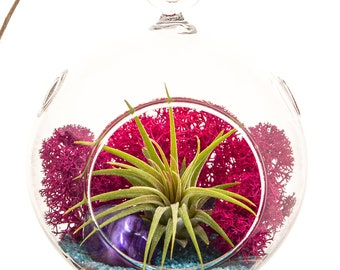 Mini Air Plant Terrarium with Fuchsia Moss, Turquoise Sand and Purple Agate / Teardrop or Round