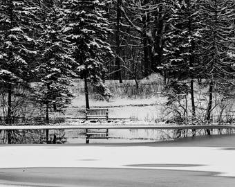 Pond, Winter Scenic, Snow, Ice, Water, Trees, Black & White Photography