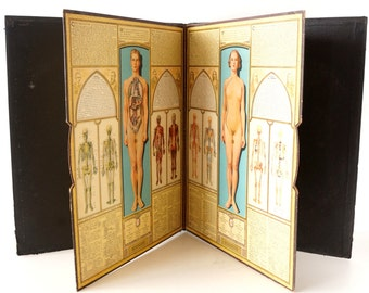 """Vintage """"Bodyscope"""" Illustrated Anatomical Book with Dials for more views 16"""" x 20"""" (c.1935) - Collectible, Science Display, Medical Oddity"""