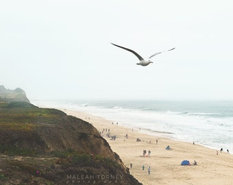 Beach Photo, California Beach Photography, Beach Decor, Seagull Print, Coastal Wall Decor, California Coast, Beige, Beach Art