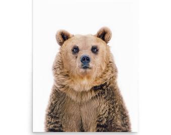 Bear Print, Nice Bear, Animal Portrait, Animal Nursery Print, Nursery Decor, Woodland Animal Print, Digital Print, Fine Art Photography