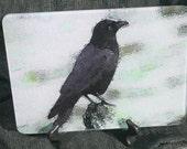 Glass Cutting Board - Crow 7.75in  x 10.75in