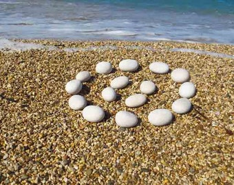 16 small oval white pebbles polished by Mediterranean Sea HD picture on the beach.