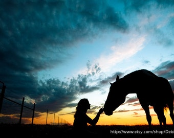 Animal Horse Lover Silhouette -Sunset Sky Nature -Fine Art Print -Black Blue Orange -Home Decor Wall Art -Veterinarian Office
