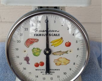 AMERICAN FAMILY SCALE