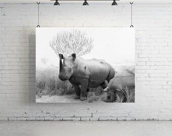 Large Rhino Print - Vintage Photography, Wall Art