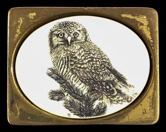 Vintage Owl Faux Scrimshaw Solid Brass Belt Buckle