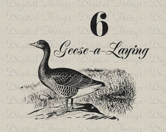 12 Twelve Days of Christmas Six Geese Laying Birds Printable Digital Download for Iron on Transfer Fabric Pillows Tea Towels DT1281