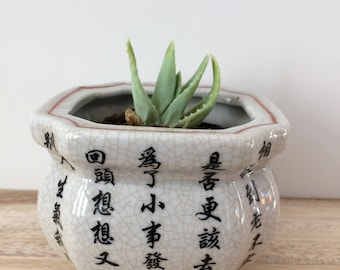 Chinese cache pot / planter / Asian characters / Chinoiserie