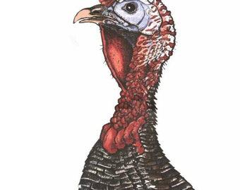 Rough Neck Target System Turkey Shoot, gun range, shooting target, hunting target, deer target, turkey target, rifle, pistol, reusable