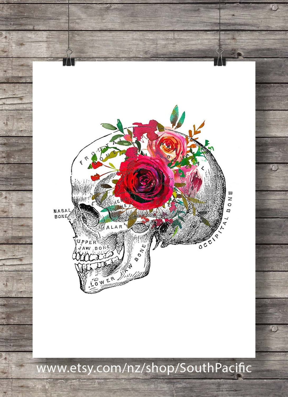 Skull Watercolor flower Printable art floral anatomy skull