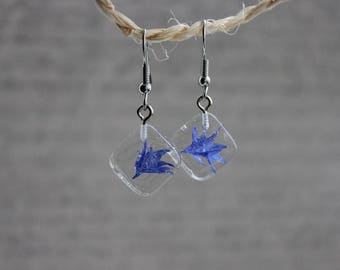 Square earrings 1.3 cm resin inclusion of blueberries