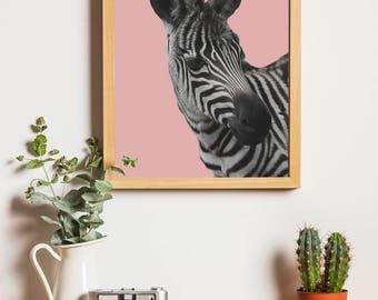 Blush Zebra Downloadable Print