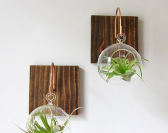 Individual Wood and Copper Wall Mount with Glass Orb and Plant // Unique Wall Decor // Handmade Wall Hook, home decor, aerium, air plants