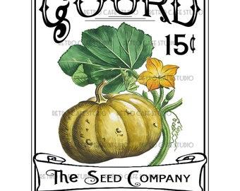 Vintage Illustration Gourd Seed Packet Digital Download Vegetable Transfer Clip Art