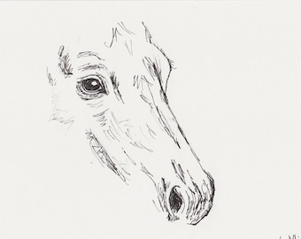 Horse Sketch, Original 5x7 Pen and Ink Equine Art, Horse Portrait Drawing
