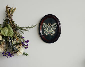 Framed Butterfly- ORIGINAL