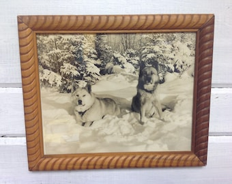 Vintage Sepia framed photo - Husky Sled Dogs in the snow