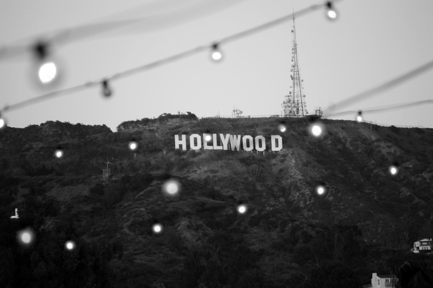 Hollywood Sign Black And White Photograph 16x20