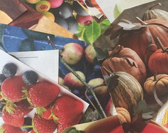 25 Magazine Clippings (Fruits and Veggies)