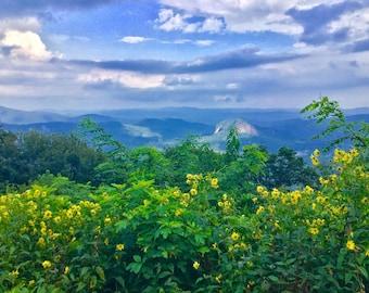 Pillows   Original Photography   Blue Ridge Mountains + Wildflowers, Nature, Art, Home Décor