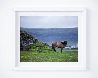 Iceland horse print - Dusk farm photograph - Travel photos - Large wall art - Pony photo print - Framed fine art - Horse lovers gift