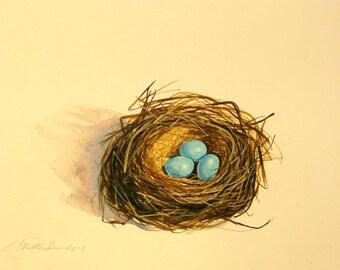 Original robins egg nest with three turquoise blue eggs. Original painting measures  9 1/2'' x 12 1/2''. Original watercolor  r