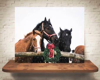 Horse Photograph - Fine Art Print - Color Photography - Wall Art Decor - Horse Pictures - Farmhouse Decor - Horses - Christmas Decor