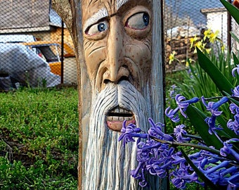 Tree Spirit face carving- old Man Wizard Statue-Elder Gnome Wood Spirit- Wood Carving- Gandalf Wall Mask- Wicca Decor