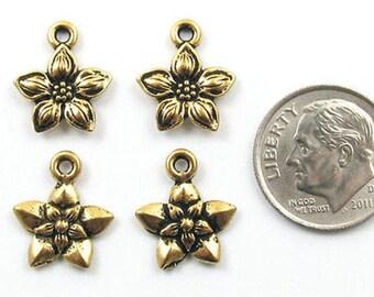 TierraCast Pewter Charms-Gold Star Jasmine Flower (4)