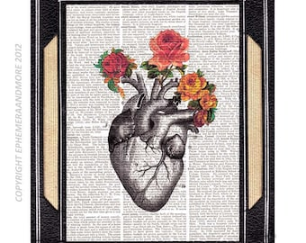 Anatomical Heart with Roses art print Love Wedding Anniversary Cardiology Doctor Gift on vintage dictionary book page human anatomy 8x10,5x7