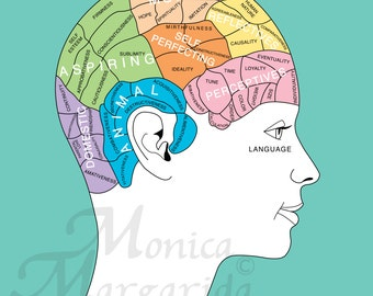 Phrenology poster etsy phrenology art print picture good health brain diagram woman poster modern digital ccuart Image collections